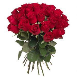 30 Rosas rojas