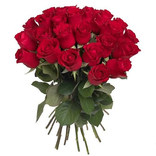 30 rosas rojas de regalo