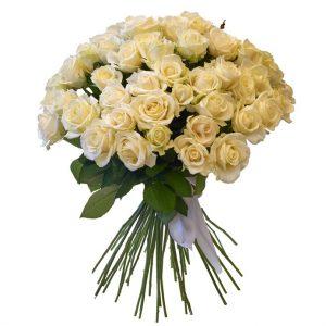 40 Rosas blancas