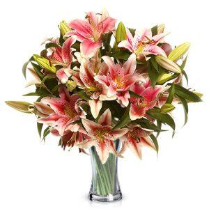 Liliums de olor color rosa