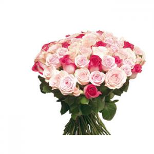 50 rosas rosas