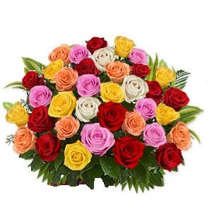 rosas de colores variados