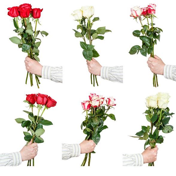 tres rosas color