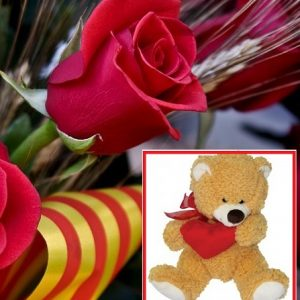 Rosa de Sant Jordi con peluche