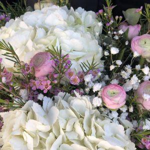 Hortensias blancas con flores rosas